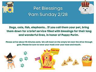 Pet Blessing .jpg