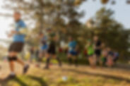 Panoráma_Trail_2019.jpg