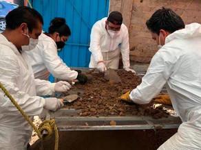Siguen pesquisas contra presunto feminicida mexicano y hallan miles de huesos