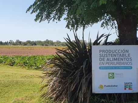 Pueblo Esther tiene su primer campo de producción agroecológica.