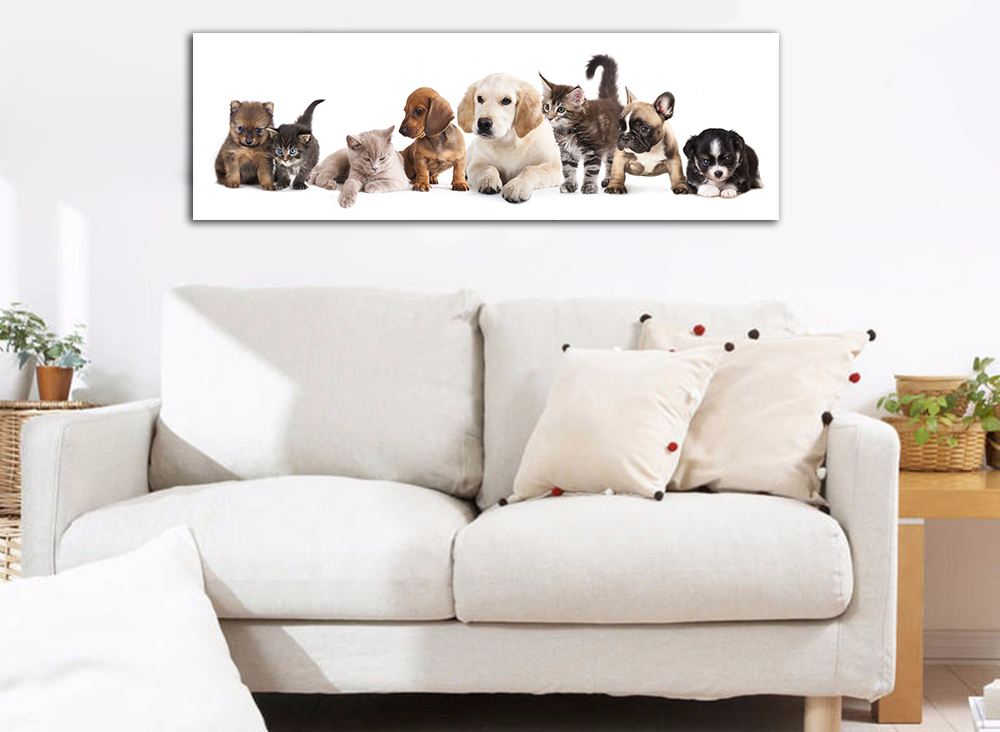 303281 Puppies and kittens 60x150.jpg