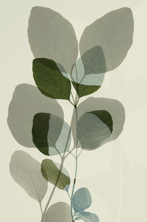 W1171D Green Leaves 10