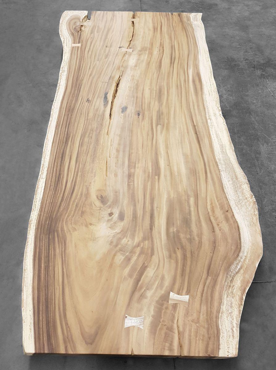 hout-boomstamtafel