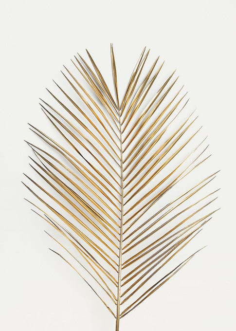 MF969-1444 Palm Leaf Gold  Resizable