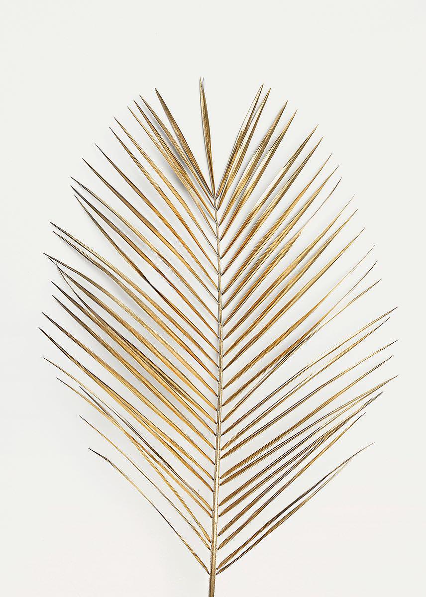 MF969-1444 Palm Leaf Gold  Resizable