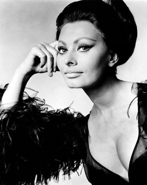 Foto op plexiglas / dibond  Sophia Loren