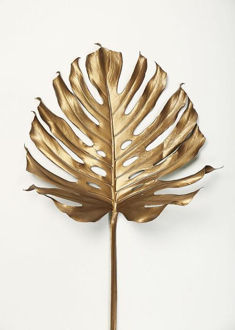 MF969-1445 Monstrea Gold Leaf  Resizable