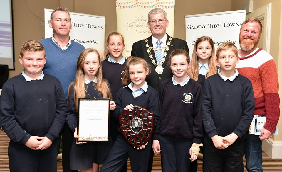 Galway tidy Towns winners 2015