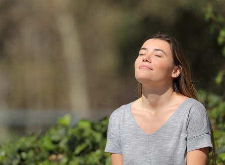 ¿Qué pasa si no te da el sol?