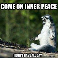 Sunkissed Suncatchers Meditation Inner P