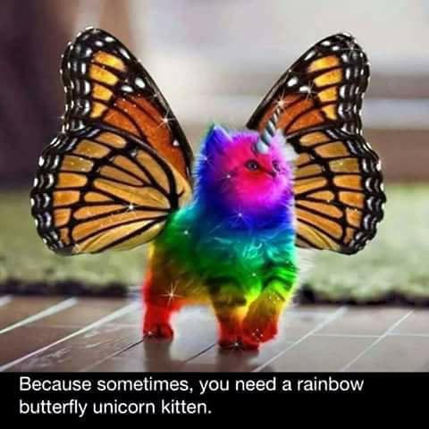 Sunkisssed Suncatchers Rainbow Butterfly