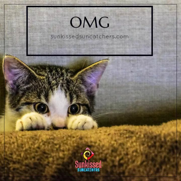 Sunkissed Suncatchers OMG Cat.jpg