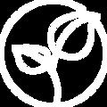 Homöopathie / Bach-Blüten Naturheilpraxis Maren Schubert-Kmoch Heilpraktikerin Vaihingen/Enz