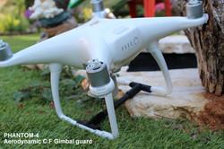 Aerodynamic P4 gimbal guard