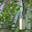 Thumbnail: LuxR™ Modux 4W Hanging Light