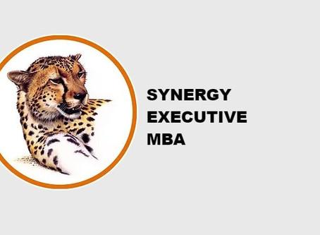 Для кого программа Synergy Executive MBA?