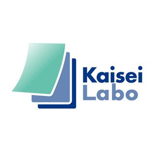 社会保険労務士法人 法改正研究所 Kaisei Labo コーポレートロゴ
