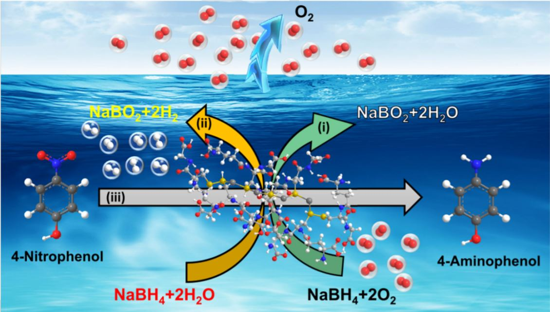 Quantification of H2 gas from the AuSO-catalyzed hydrolysis of NaBH4.