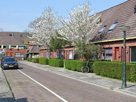 Heesterlaan / Goudsbloemstraat