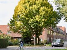 Oliemuldersweg / Meezenplein