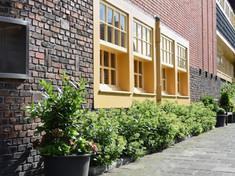 Jan Hissink Janssenstraat