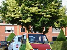Papaverstraat / Hyacinthstraat