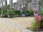 Flamingokade