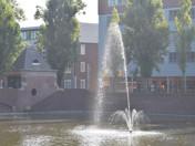 Gorechtvijver / Linnaeusplein