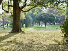 Pioenpark
