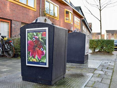 Samen kleuren we de wijk -januari '21