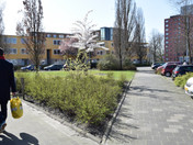Zaagmuldersweg / Slachthuisstraat