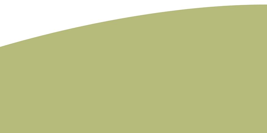green-strip-2.png