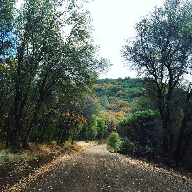 Mount Konokti Hike