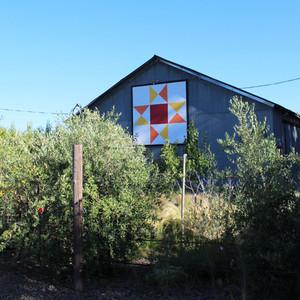 Finca Castelero barn. Photo by Alejandra Castelero.