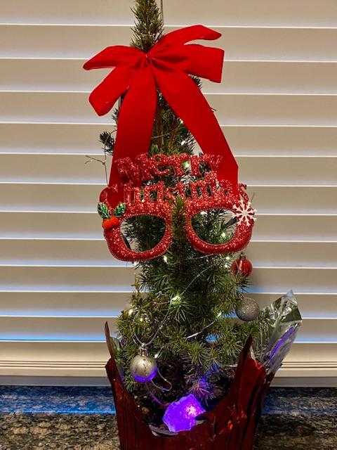 Linda's tree.jpg