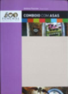 COMBOIO COM ASAS.jpg
