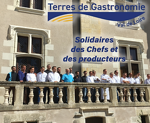 TDG Solidaires 3.png