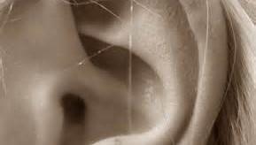 Décodage du conduit auditif externe (CAE) (pistes)