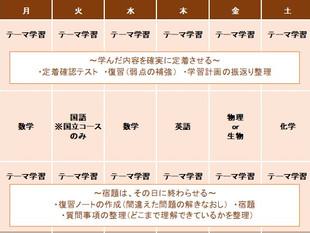 医学部コース(高卒)