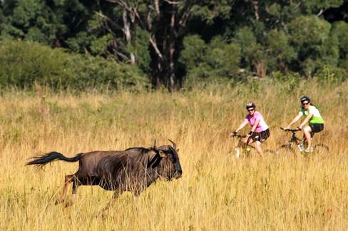 Royaume d'eSwatini (ex-Swaziland)