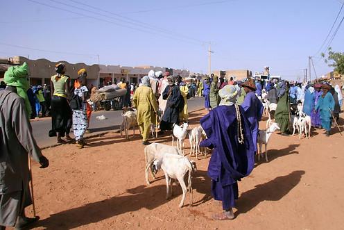 Vallée du fleuve Sénégal 010