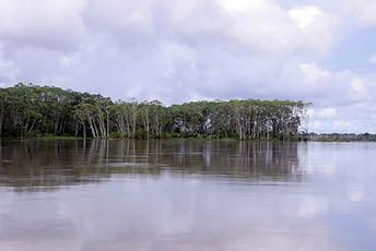 Amazonie péruvienne 016