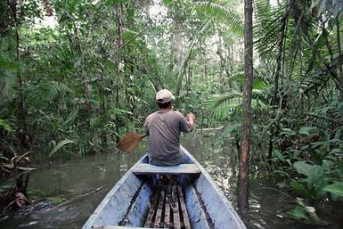 Amazonie péruvienne 033