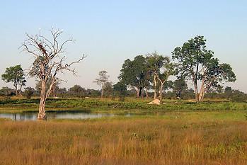 Parcs Nationaux du Zimbabwe 001