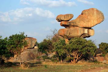 Parcs Nationaux du Zimbabwe 006