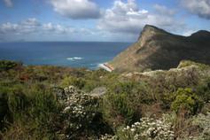Presqu'île du Cap 013