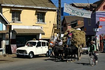 Les activités à Madagascar