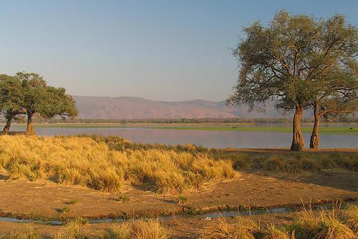 Parcs Nationaux du Zimbabwe 009