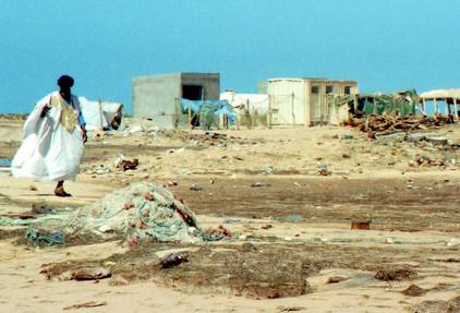 Parc National du Banc d'Arguin (Mauritanie)