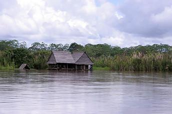 Amazonie péruvienne 018
